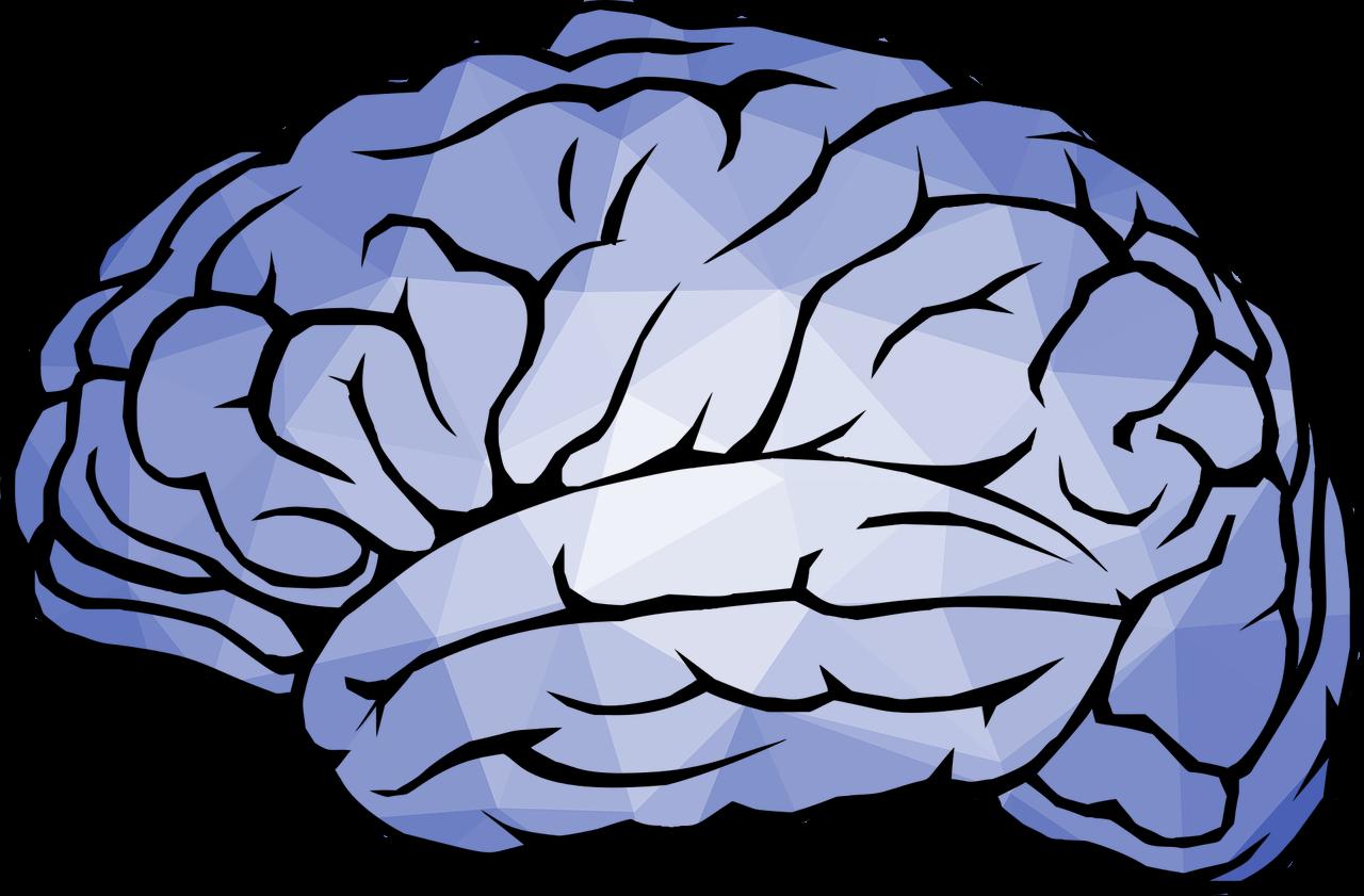 Brain KI